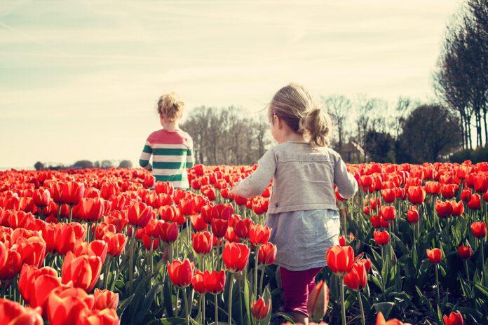 moda bambino primavera